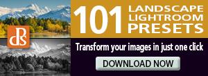 landscape_preset_300x110