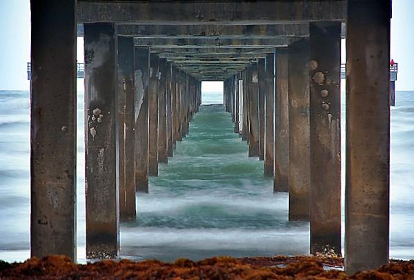 Sea World - by frankhg