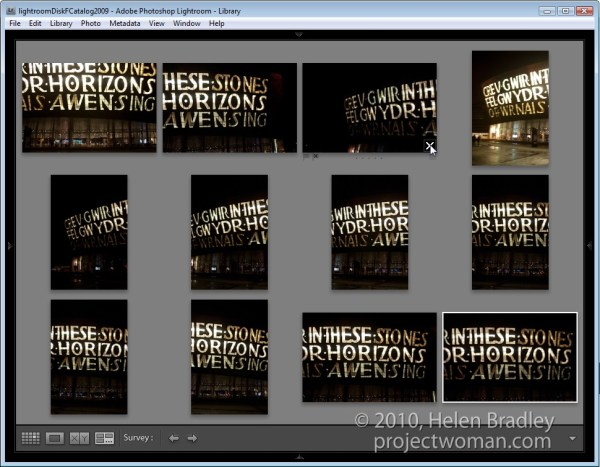 Choosing images using Survey view in Lightroom