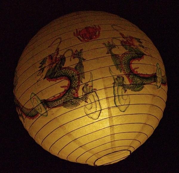 Chinese lantern 2 ISO 12,800 f14 1-2500 sec.jpg