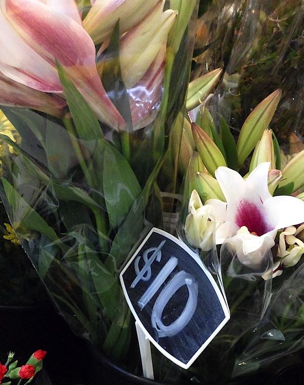 Flowers 3.6.10.JPG