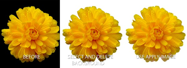 backgroundchange_before_after.jpg