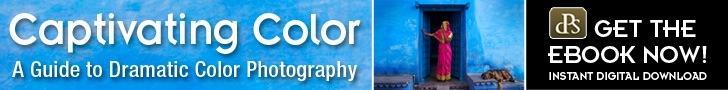 Digital Photography School Resources: Captivating Color