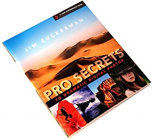 Pro Secrets to Dramatic Photos [Book Review]
