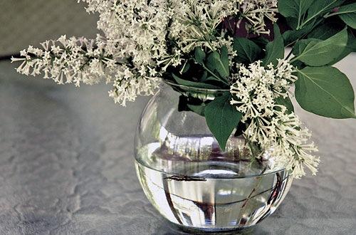 2-Vase.jpg