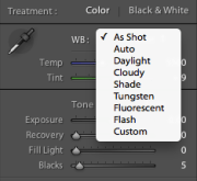 3 Ways to Change White Balance in Lightroom
