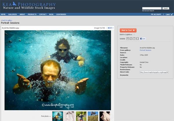 digital photo portfolio