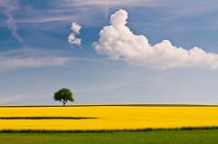 Do You Have a Favorite Landscape Photography Destination?