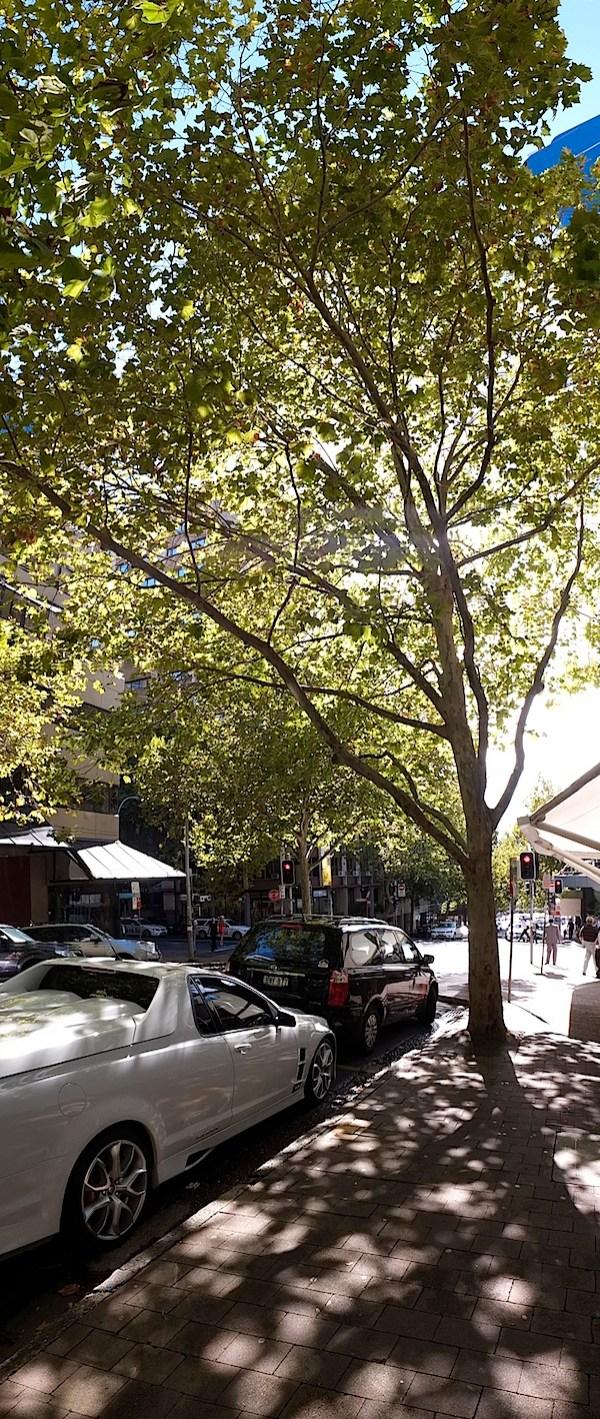 North Sydney pano 8.JPG