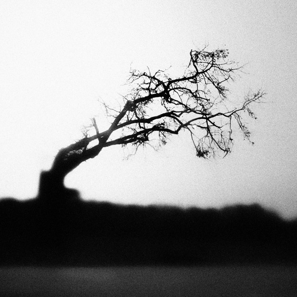 present-moment-photography-2.jpg