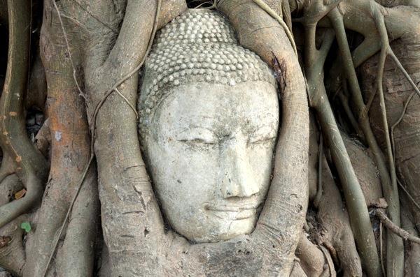 GK-Thai2-Ayutthaya