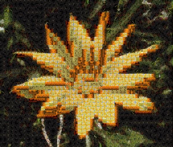 Flower Narrabeen bch 17 5 Mosaic