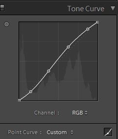 SLR Lounge HiB&W Tone Curve