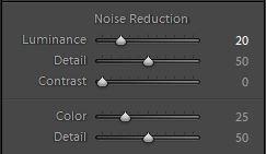 SLR Lounge B&W-Noise-Reduction