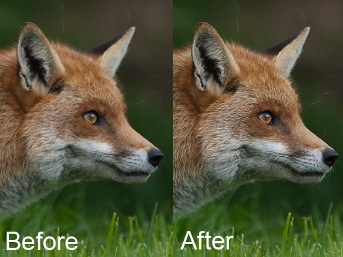 High pass sharpening, before and after