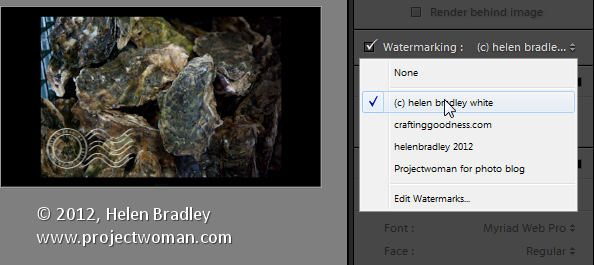 Custom lightroom image watermark 6