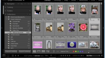 An Introduction to Lightroom Smart Collections