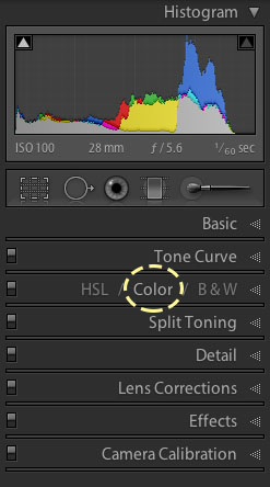 Lightroom 4 Color Controls