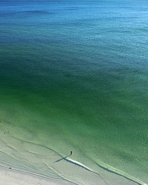 Lone Swimmer at Lido Beach, Florida