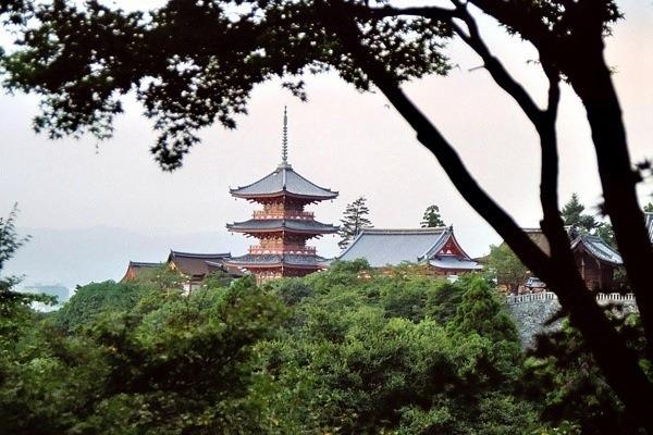 DPS Japan 03