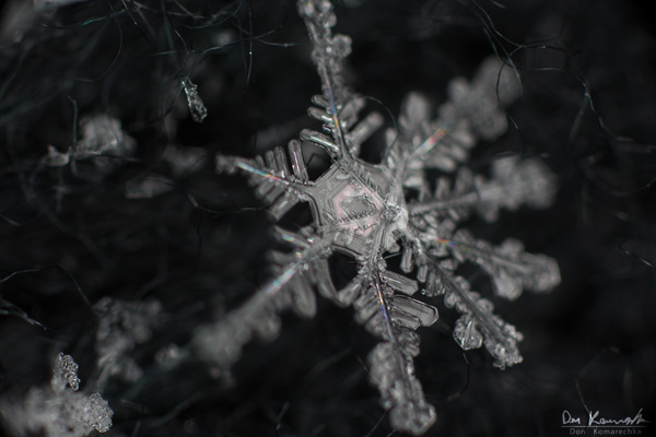 How to Photograph Snowflakes 6