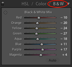 lightroom BandW selection