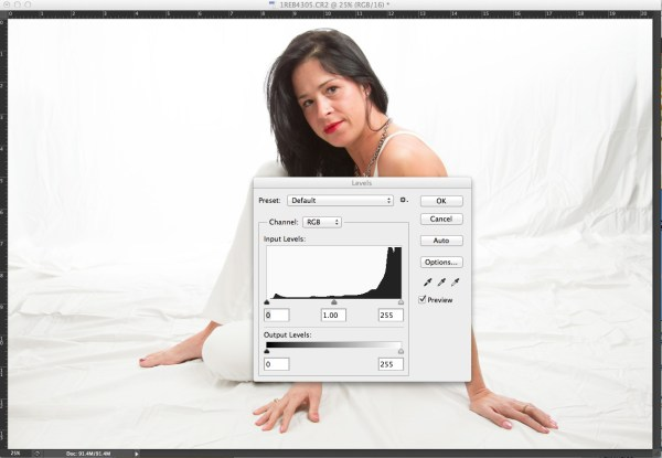 In this high key portrait, the histogram shows a majority of pixels on the right side, representing brighter pixels. This is to be expected due to the white background and outfit worn.