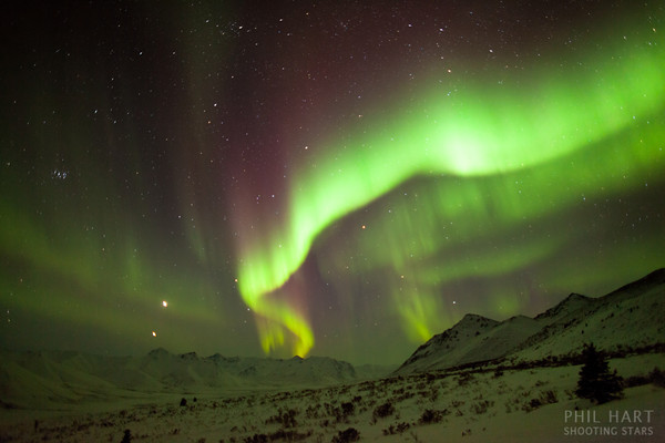 Image: Fast and Bright Aurora: 2 second exposure with 24mm lens at f1.4, ISO3200.