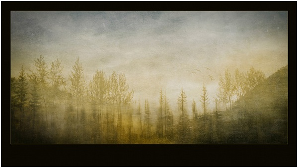 Fine art painterly images from your photos rainforesttapestry fandeluxe Images