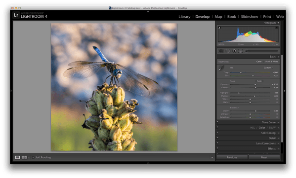 Master These Five Lightroom Sliders and Your Photos Will Pop