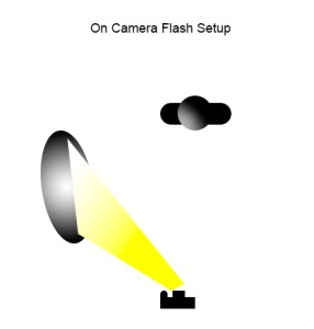 This diagram shows the lighting for the image above.  The uncoated muslin reflector is positioned above and to the left of the camera, with the flash bounced into it. Play with the angle of the reflector to get the lighting just right.