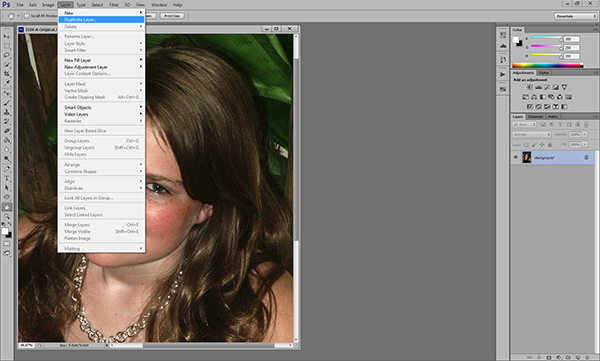 Duplicate the background layer in the Layers Menu.