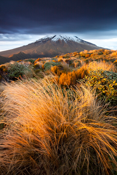 Mount Egmont New Zealand. Canon 5d mkii, Canon 17-40mm f/4 ultra-wide, Marumi polarizer. 17 mm, f/16, 1 sec, ISO100. By getting implausibly close to the foreground grass in this scene I have eliminated other distracting elements, increased the visual weight of the grasses and accentuated the leading lines in the bottom right of shot. As well as being close, I was also very low to the ground while making this image.