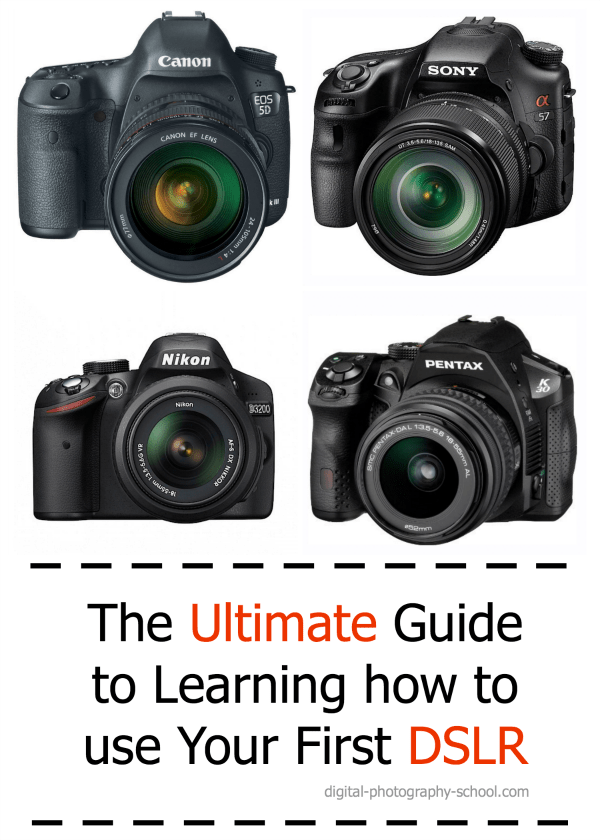 the ultimate guide to learning how to use your first dslr rh digital photography school com Cameras for Beginner Photographers Guide for Beginners SLR Camera