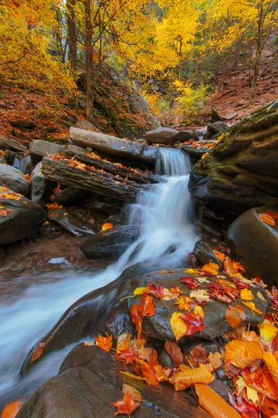 A small cascade at Kaaterskill falls in upstate New York. It's important to balance the long shutter to blur the water, with the need for keeping the foliage sharp.  While blending two exposures will accomplish this, I preferred to try and capture the scene in one exposure.  Exposure was 1/3 second, f/22, ISO 100. EF 14mm f/2.8L II with EOS 5D Mark III.