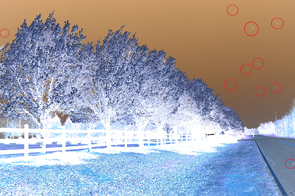 By inverting the photo and creating a negative, several additional problem areas are revealed.