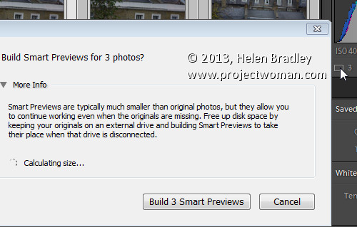 Lightroom 5 smart previews 7