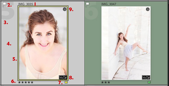 Using Lightroom's Grid View