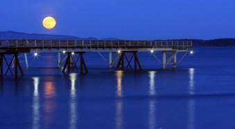 Long Nights Moon by Anne McKinnell