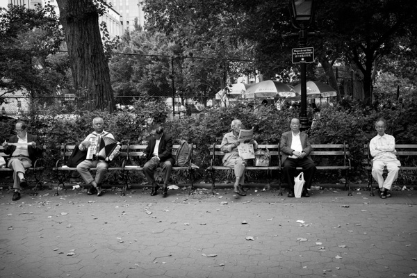people sitting in the park