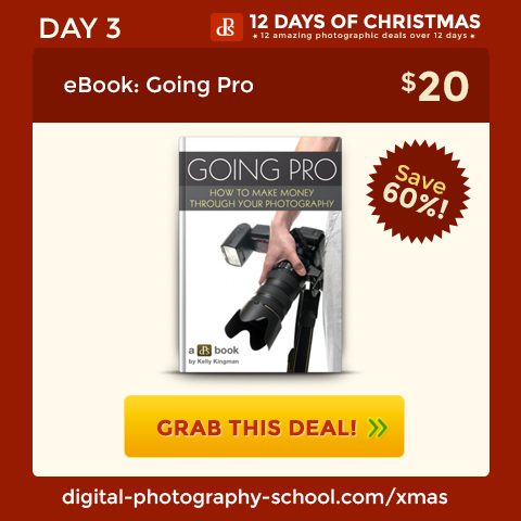 Day 3 Deals - Turn your Dreams of Going Pro into Reality