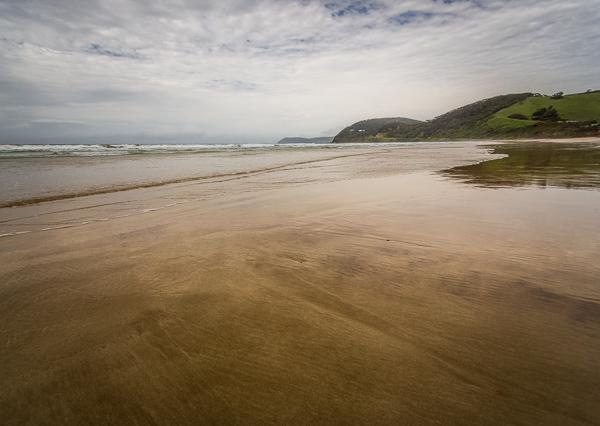 beach-summer-dps-01