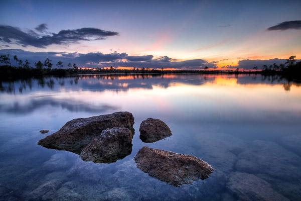 Pine Glades Lake, Everglades National Park, Florida, by Anne McKinnell