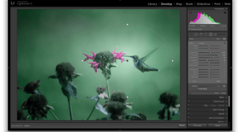 3 Uses for the Radial Filter Tool in Lightroom