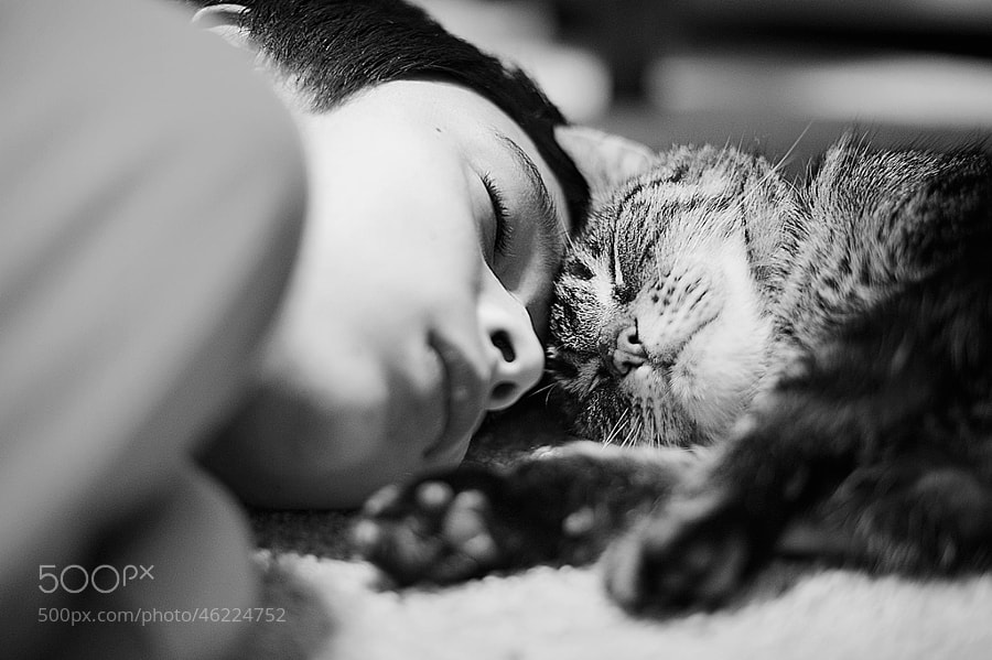 Photograph Pals by Michiyo Clark on 500px