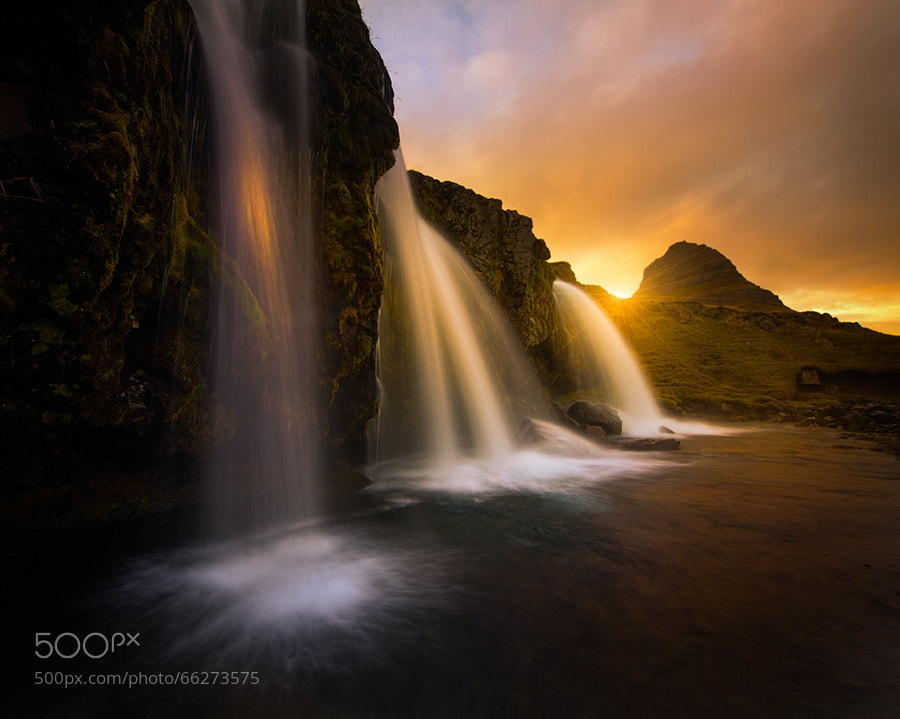 Photograph The Sunlit Kiss by Alister Benn on 500px