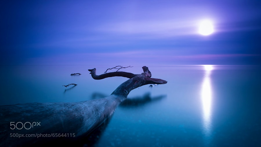 Photograph blue dreams by dpicture on 500px