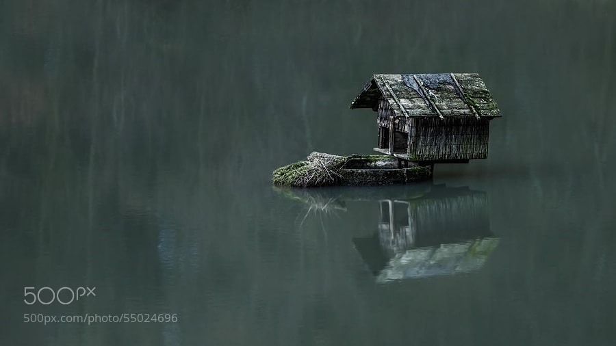 Photograph house of the duck by Ronny Engelmann on 500px