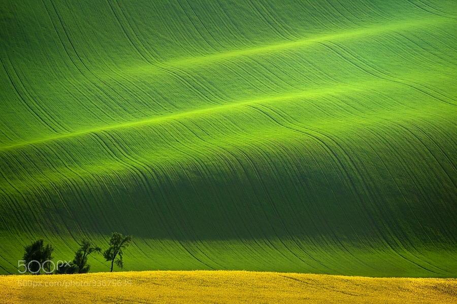 Photograph South Moravia II by Daniel ?e?icha on 500px