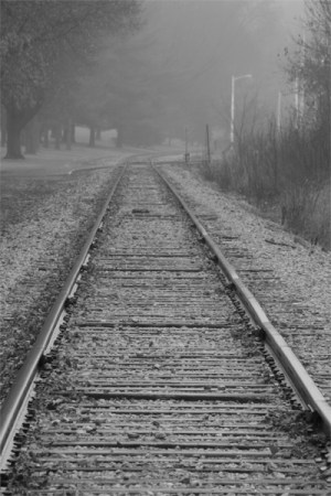 fog, foggy, morning, railroad, tracks, black and white, B&W